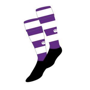 Wageningen Match Sock Purple White